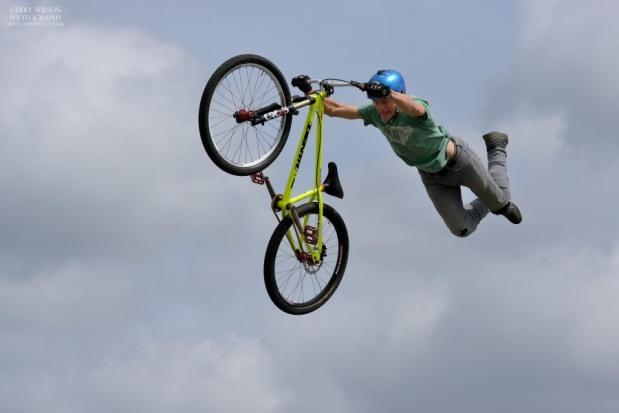 Flying High withanimal.co.uk